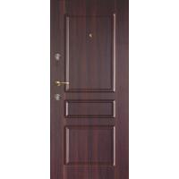 Двери с полимерными накладками 17